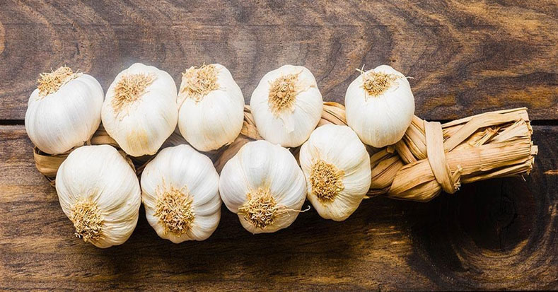 Benefits of Garlic in Weight Loss