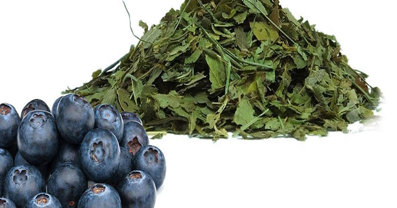 Mind Boggling Benefits of Bilberry Leaf