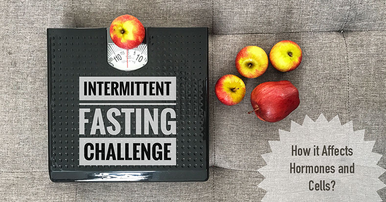 How Intermittent Fasting Affects Hormones