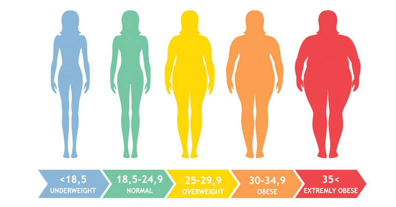 Ways To Manage Body Weight For Different Body Types