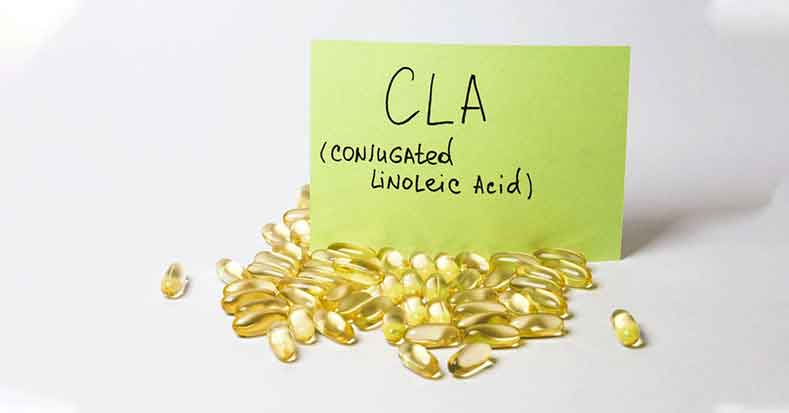 What is CLA And How Does It Help You Lose Weight?