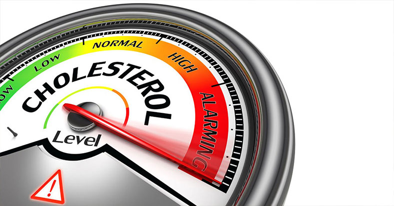 Simple Ways To Balance Your Cholesterol Levels